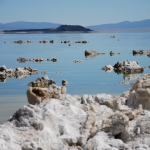 Skulpturen am Mono Lake